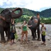Elephant Nature Park 10th Anniversary: My Bucket List