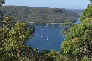 A view of Pittwater from the top. Photo by Bobbi Lee Hitchon