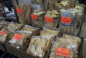 Dried shark fins for sale on Dried Seafood Street in Hong Kong. Photo by Bobbi Hitchon